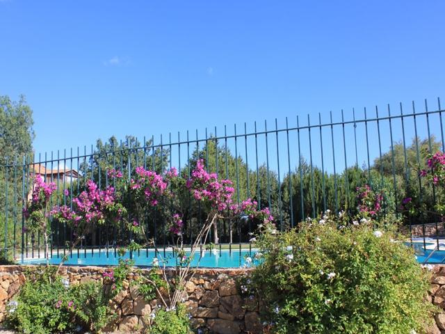 smeralda suite - reizen en vakanties sardinie - sardinia4all (7).jpg