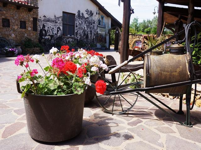 sa mandra - agritursimo alghero - sardinia4all vakanties (3).jpg