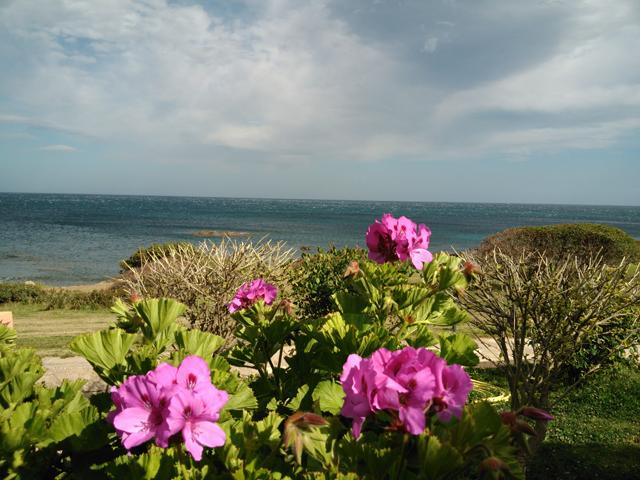 vakantie_appartementen_sardinie_aan_zee_porto_corallo_villaputzu (38)