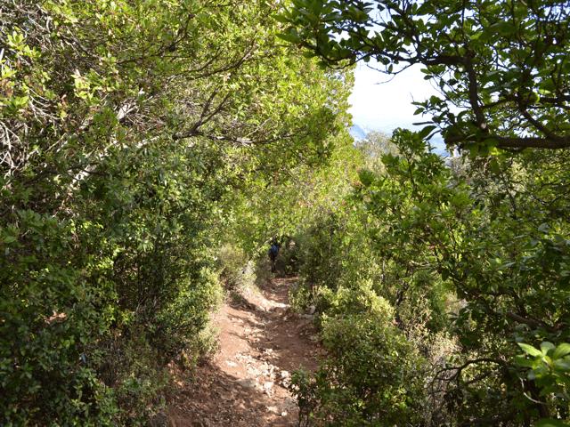 sa portisca landschap_natuurpark_sardinie-2.png
