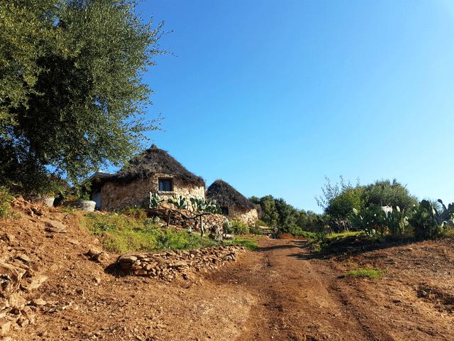 vakantie-sardinie-herders-hutjes-essenza (6).png