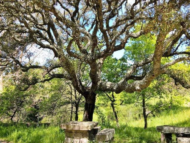 excursie vanuit arcamyrtus, alghero - sardinie.jpg