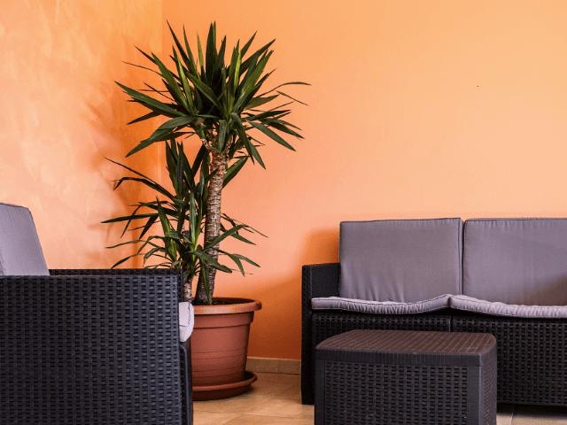 appartement-villasimius-le-fontane (7).png