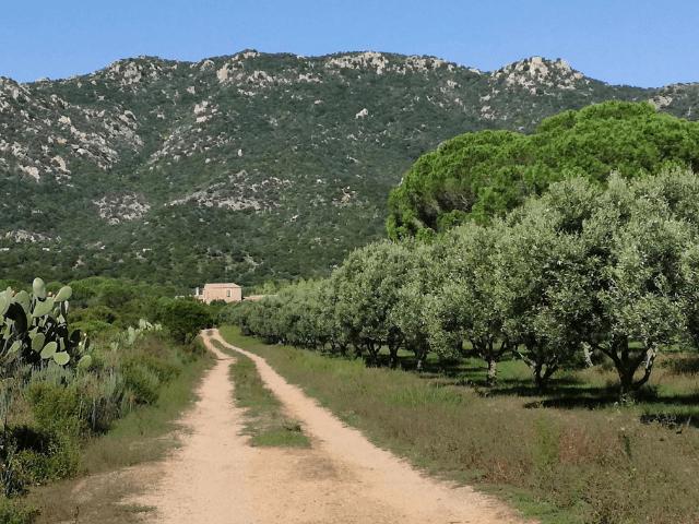 landhuis sardinie - sardinia4all (3).png