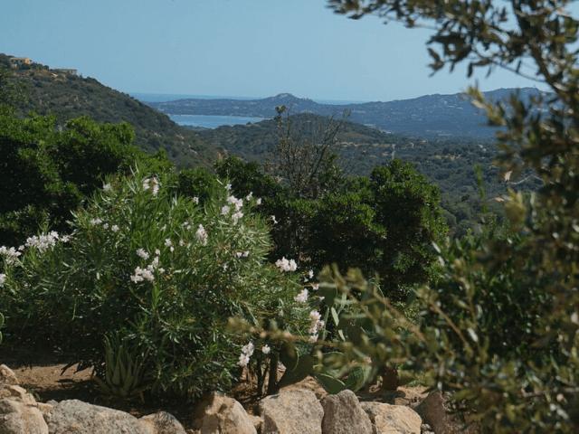 casagliano-resort-sardinie (10).png