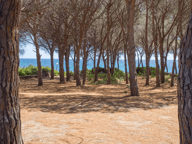 vakantiehuisje sardinie aan zee - sardinia4all (24).png