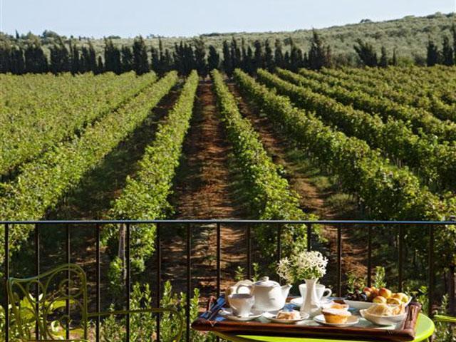 Uitzicht vanuit de kamer over de wijngaard - Alghero - Sardinië