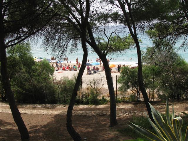 vakantiehuis sardinie pal aan het strand