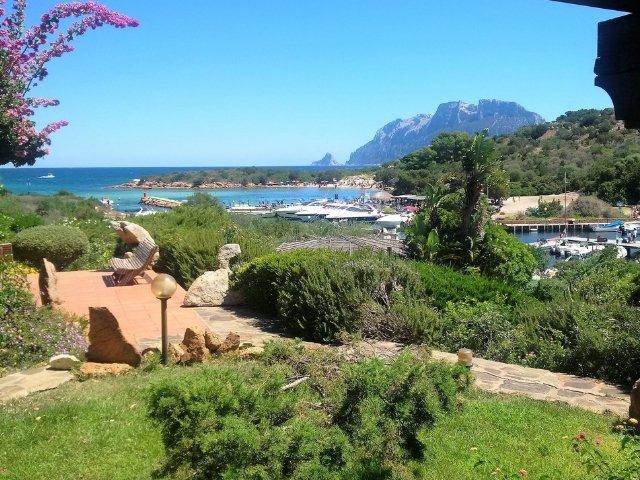 Villa Sara - Costa Corallina 13